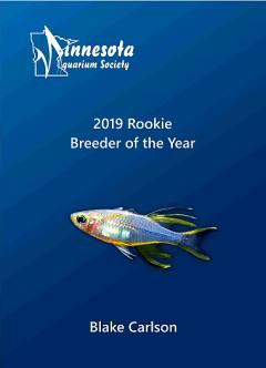 2019 Breeder of the Year - Andrew Henderson
